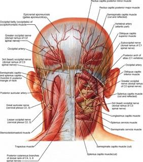 suboccipital release technique